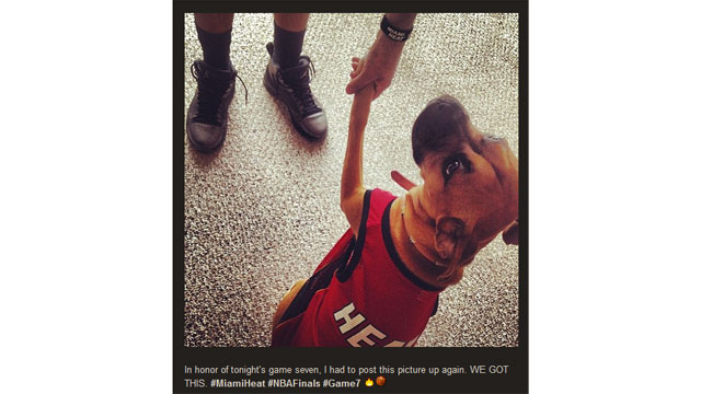 PHOTO: Internet Show-Offs: NBA Finals Fandom Online
