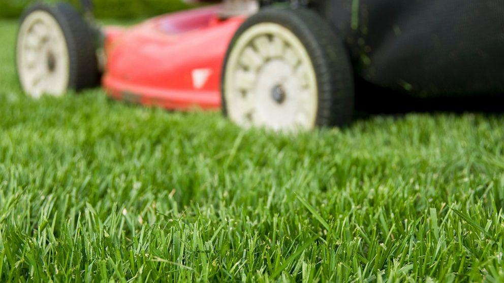 Tại sao máy cắt cỏ là một công tắc điện