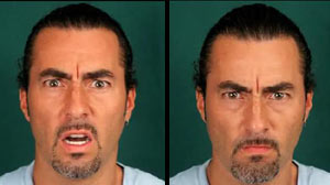 PHOTO trained agents to detect deception in travelers based in part on facial ?micro expressions