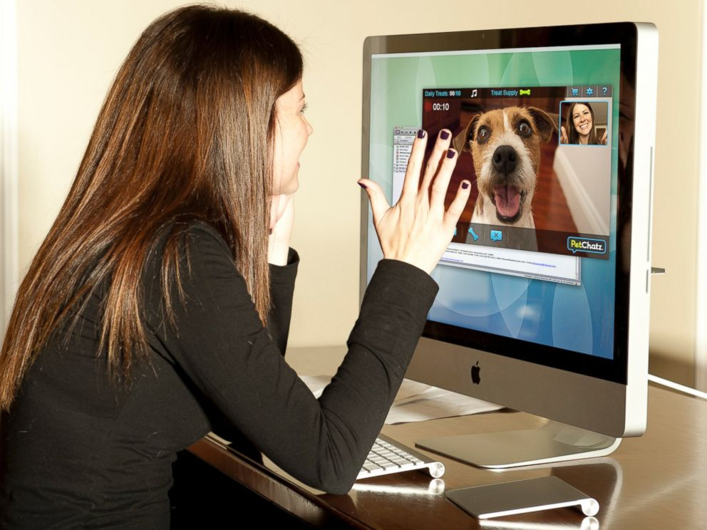 PHOTO: PetChatz allows you to chat with your pet while you are away.