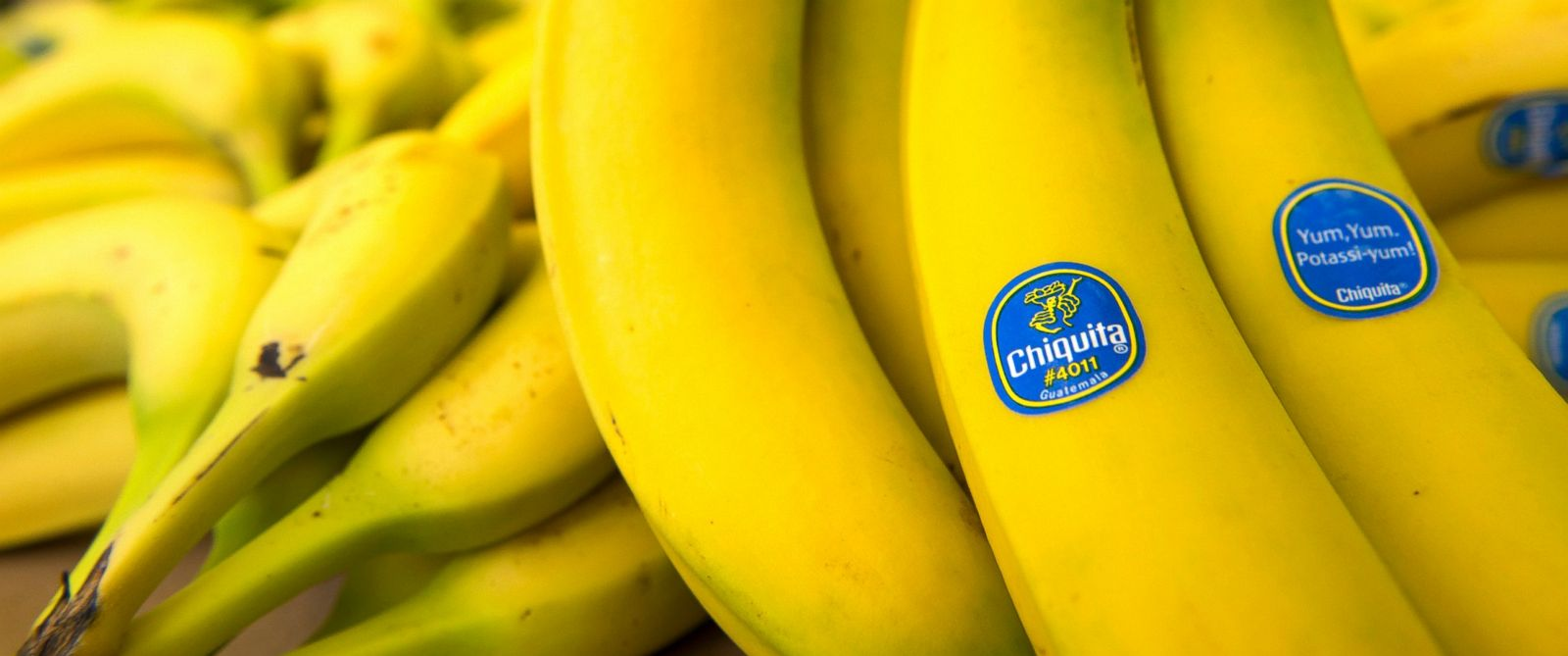 PHOTO: Chiquita Brands International Inc. bananas are arranged for a photograph at Union Street Produce Co. in San Francisco, Calif. on Feb. 19, 2013.
