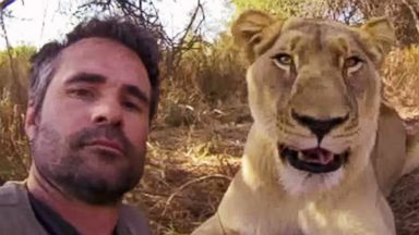 """PHOTO: Kevin Richardson, known as the """"Lion Whisperer,"""" and a GoPro camera get up close and personal with lions and other animals. The video has had more than 15.8 million views in just six months."""