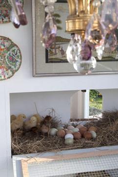 ht hen house nt 121212 vblog $100,000 Hen House Features Brooder Boudoir