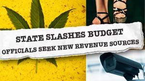 IMAGE: weird ways for states to raise/save money