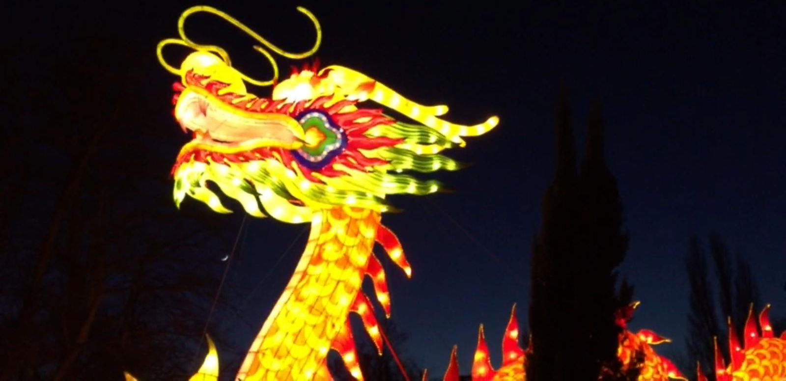 VIDEO: London's Magical Lantern Festival