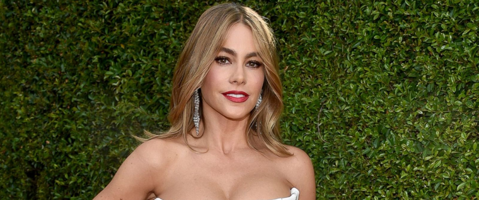 PHOTO: Sofia Vergara arrives at the 66th Primetime Emmy Awards at the Nokia Theatre L.A. Live, Aug. 25, 2014, in Los Angeles.