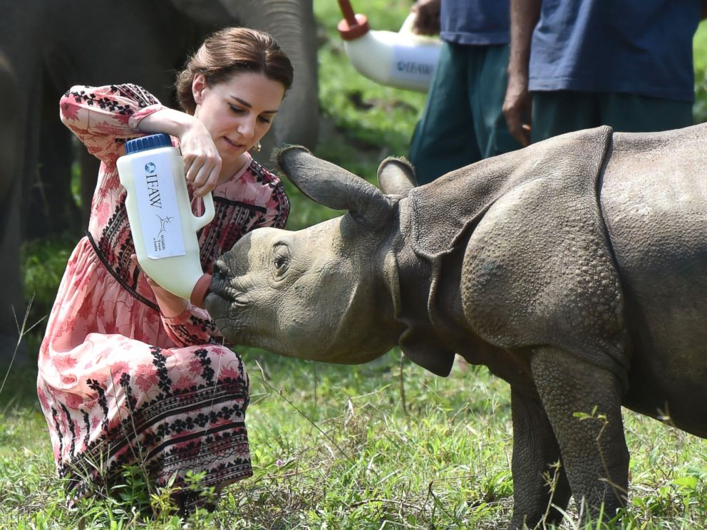 Kate-Will in Kaziranga, enjoy Bihu encounter rhino, visit nearby villages