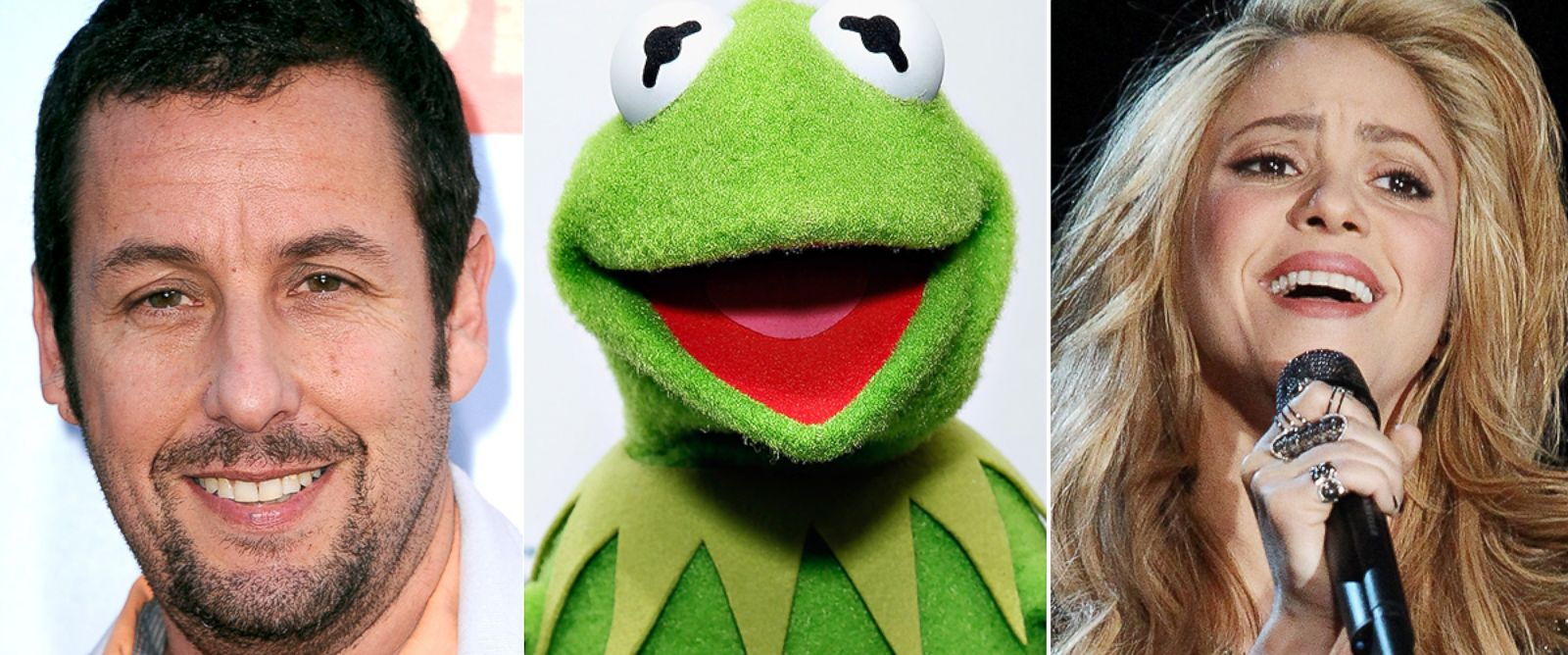 PHOTO: Rob Cantor impersonates dozens of celebrities, including Adam Sander, Kermit the Frog and Shakira.
