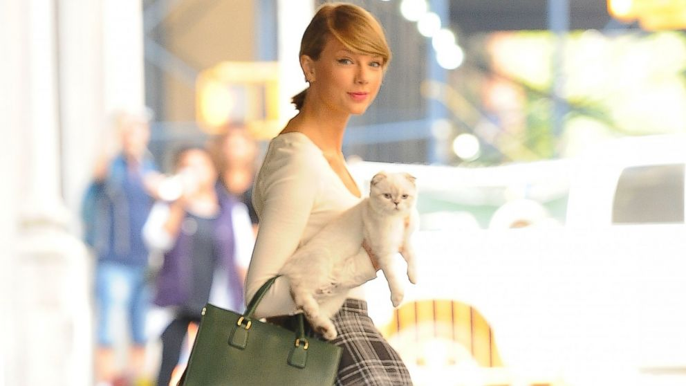 Taylor swift explains why she always carries her cat olivia benson