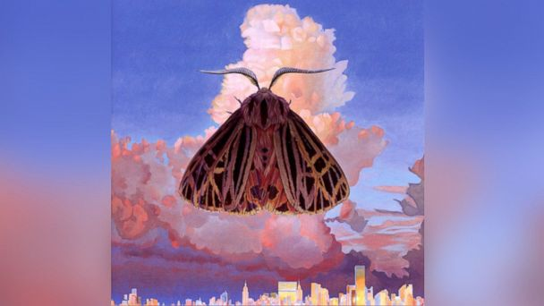 """PHOTO: Chairlift - """"Moth"""""""