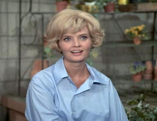 Top 7 Carol Brady Hairstyles, Mullet to Flip Picture ...