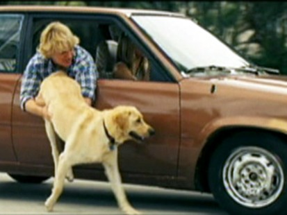 VIDEO: Scene from Marley and Me.