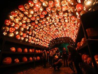 PHOTO: Visitors are seen inside a tunnel made of pumpkins at The Great Jack OLantern Blaze spectacle in Croton-on-Hudson village of New York City on October 28, 2014.