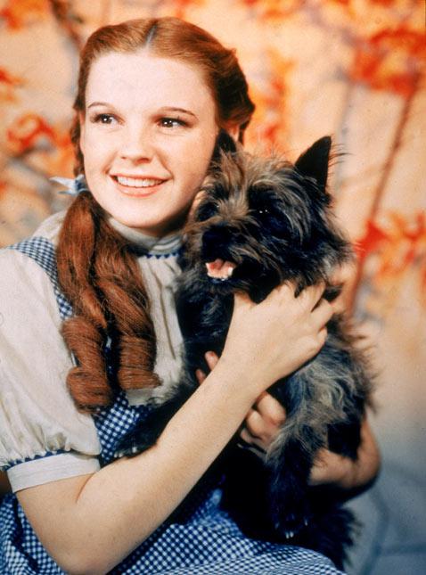 gty judy garland 1 dm 120606 vblog Remembering Judy Garland on Her 90th Birthday
