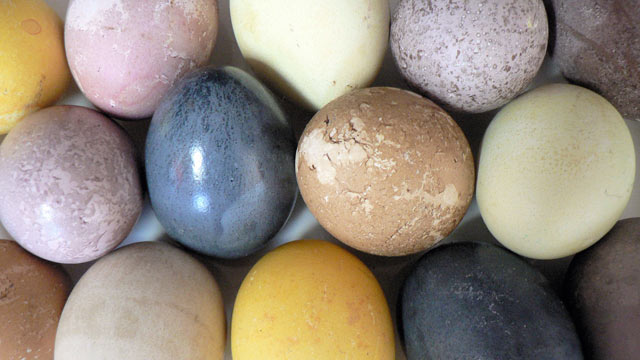 PHOTO: Diane Henderiks' naturally dyed Easter eggs are shown here.