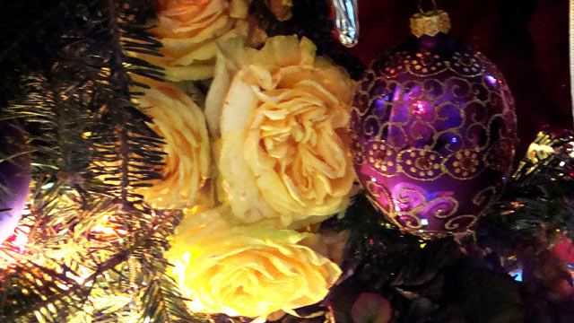 PHOTO: Lisa Riso's Christmas tree decorations are shown.
