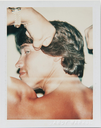 ht warhol arnold schwarzenegger ll 110220 vblog Andy Warhols Polaroid Portraits