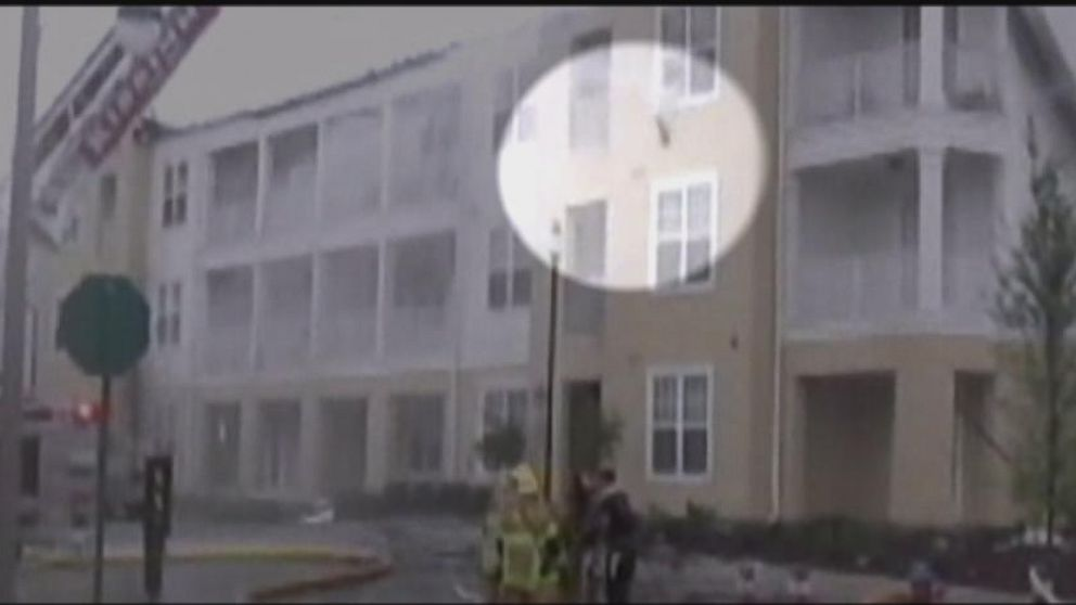 VIDEO: Cat Leaps From Building on Fire