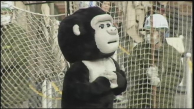 VIDEO: Zookeeper Dresses as a Gorilla