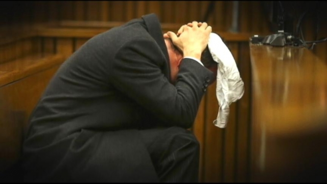 VIDEO: Testimony by pathologist Gert Saayman was so graphic, audio and video was banned from court.