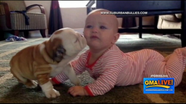 VIDEO: Baby Playing with Puppy May Be The Cutest Thing Online