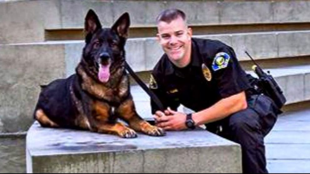 VIDEO: Bruno the German Shepard was shot in the face while chasing down a suspect.