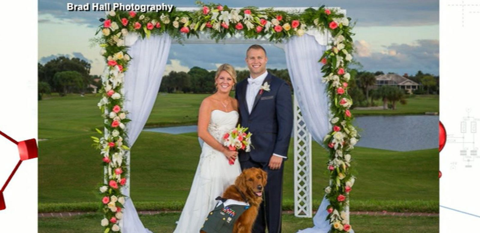 VIDEO: Wounded Veteran Marries, Service Dog Bears the Ring