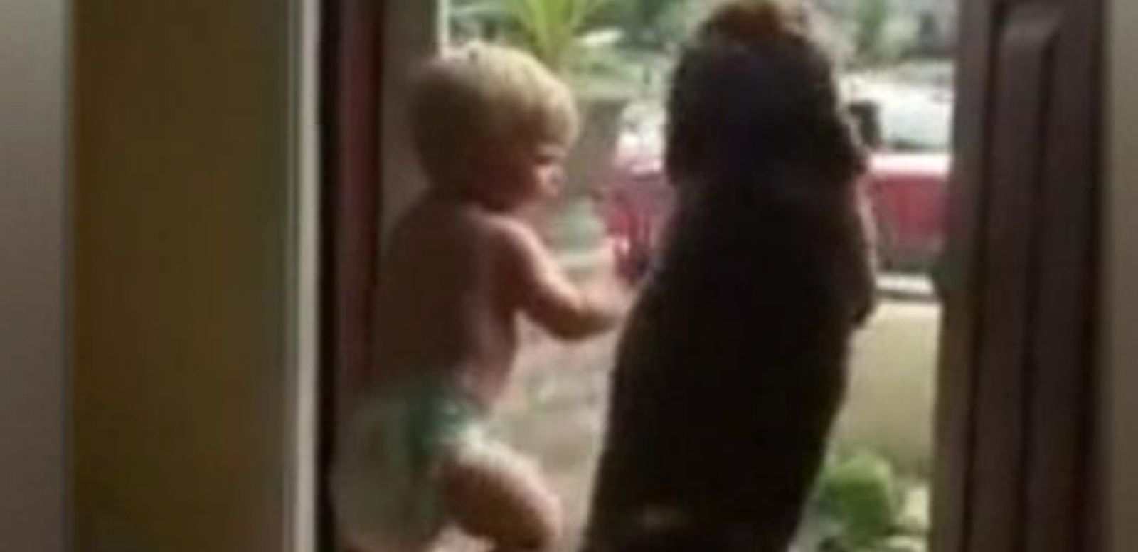 VIDEO: Baby and Dog Can't Control Excitement When Daddy Pulls in the Driveway