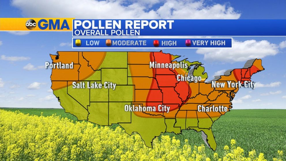 High Pollen Count From the Plains to the Northeast Video ...