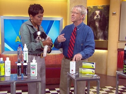 VIDEO: Marty Becker shows how to check your pet for allergies.