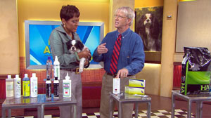 Veternarians have options for pets struggling with allergies.