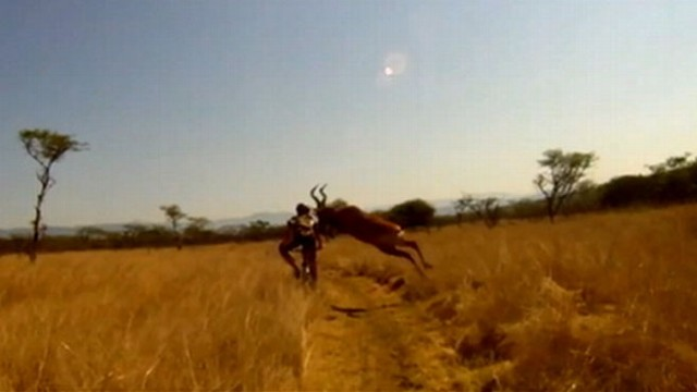 VIDEO: Video shows a bike ride gone wrong when a buck collides with a biker.