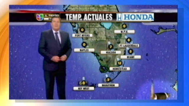 VIDEO: Univisions Miami weathercaster had to contend with a surprise furry visitor.