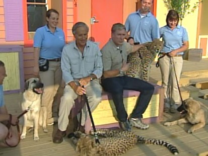 VIDEO: Sam Champion meets wild and tame animals at the Columbus Zoo.