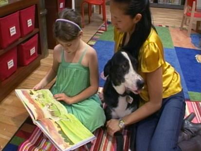 PHOTO ABC GMA DOG