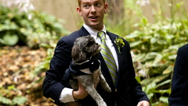 VIDEO: More couples are choosing to have their dog walk down the aisle in style.