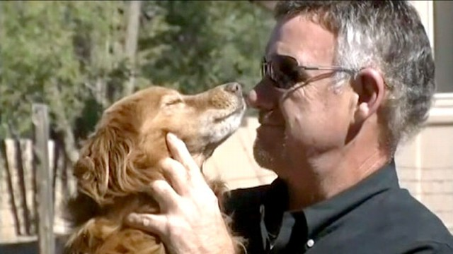VIDEO: Lost Dog Returned to Owner After Two Months