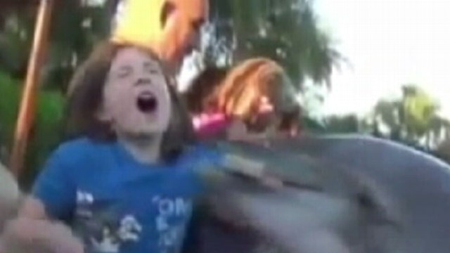 VIDEO: A family trip to Orlando Seaworld ends poorly for one little girl.