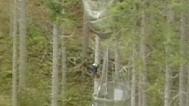 VIDEO: Paratroopers Rescued From Trees