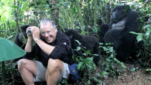 VIDEO: An incredible interaction between man and gorillas is caught on tape.