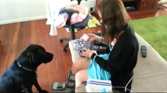 VIDEO: Mans Best Friend Helps Propose