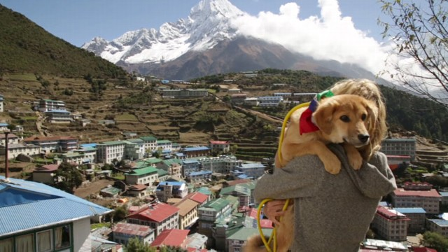 VIDEO:Rupee joined his master Joanne Lefson on the worlds highest peak.