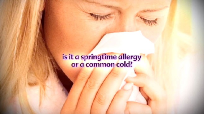 VIDEO: How to tell the difference between a springtime allergy and the common cold.