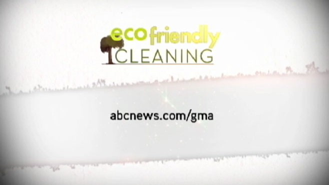 VIDEO: Save money and protect the environment by making your own antibacterial spray.