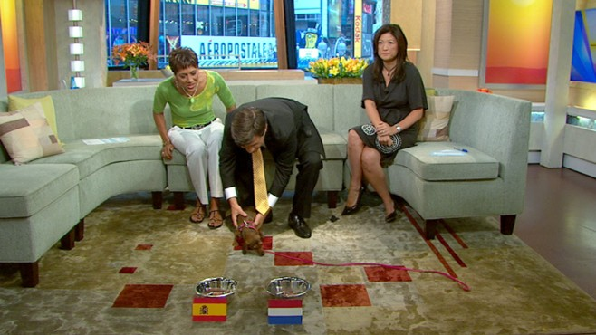 VIDEO: Can George Stephanopoulos dachshund correctly predict the World Cup winner?