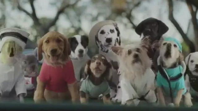 "Used-car retailer mimics its ""Slow Clap"" commercial with a ""Slow Bark"" version."