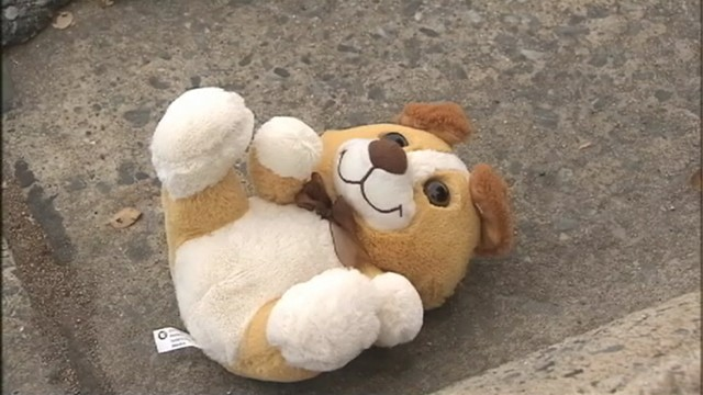 VIDEO: Police in Shelby, N.C., are investigating a roadside explosive found inside a stuffed animal.