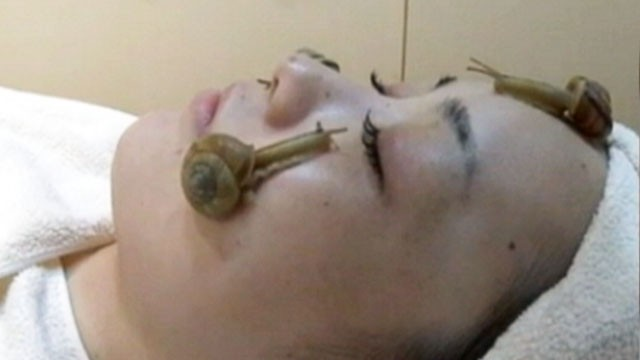 VIDEO: Japanese salon offers beauty treatment involving snail slime.