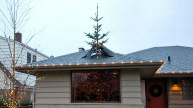 VIDEO: A Seattle, Wash., man created a mind-bending Christmas tree display.