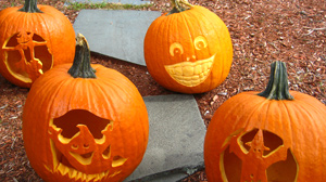 PHOTO Halloween How-To: DIY Halloween Pumpkins Easy Instructions to Carve Your Own Halloween Pumpkins